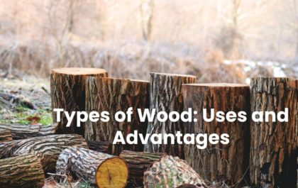 Types of Wood: Uses and Advantages